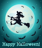 The witch flying on a broom at full moon with bats Stock Photo