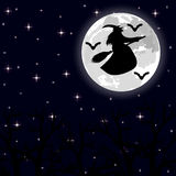 Witch flying on a broom on a full moon in the forest Royalty Free Stock Photography