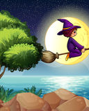 A witch flying with a broom in the middle of the night Stock Photos