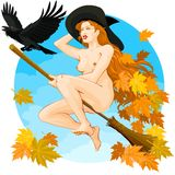 Halloween - Witch Flying 01 Royalty Free Stock Photos
