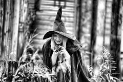Witch in the forest Stock Photos