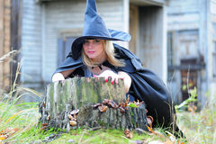 Witch in the forest Royalty Free Stock Photo