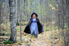 Witch in the forest Royalty Free Stock Photography
