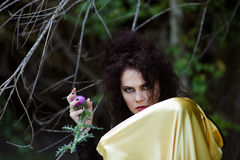 Witch in gold mantle royalty free stock image
