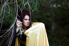 Witch in gold mantle stock photo