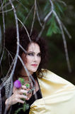 Witch in gold mantle Stock Photography