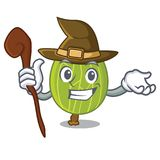 Witch gooseberry mascot cartoon style. Vector illustration Stock Photo
