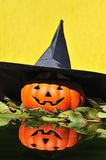 Witch halloween. Stock Images