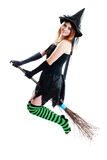 Witch halloween fly Royalty Free Stock Photo