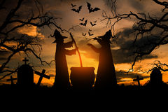 Witch in the halloween night. Stock Photography