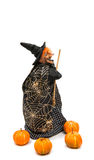 witch on Halloween Royalty Free Stock Photography