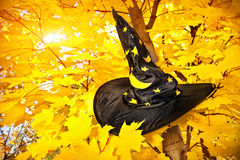 Witch hat on Halloween. Witch hat with yellow stars on maple tree with yellow leaves in autumn royalty free stock photos