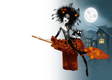 Witch  on her broom Stock Image