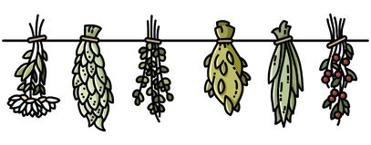 Witch herbs boho hanging flat style decoration stock illustration