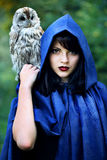 Witch In The Hood With An Owl Royalty Free Stock Image