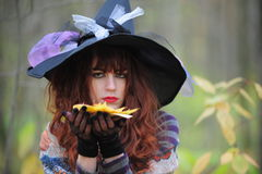 Witch In Wood Stock Images