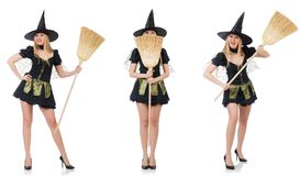 The witch isolated on the white background Royalty Free Stock Photo