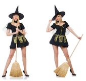 The witch isolated on the white background Royalty Free Stock Image