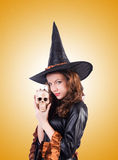 Witch isolated on the white background Royalty Free Stock Photography