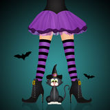 Witch legs and black cat for Halloween. Illustration of witch legs and black cat for Halloween Royalty Free Stock Photos