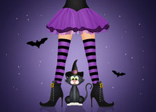 Witch legs and black cat Stock Photography