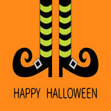 Witch legs with striped socks and shoes. Happy Halloween. Greeting card. Flat design. Orange baby background Royalty Free Stock Image