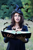 Witch looking at crows. Beautiful young witch with a book looking at crows Royalty Free Stock Photography