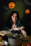 Witch making magic with book Royalty Free Stock Image