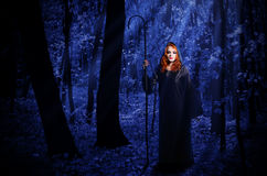 Witch in the moonlight forest Royalty Free Stock Photo