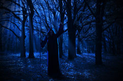 Witch in the night forest Royalty Free Stock Photography