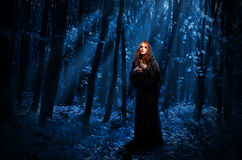 Witch at night forest Stock Photography