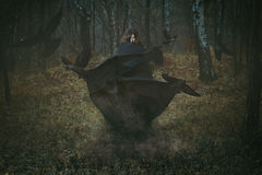 Witch Of The Forest With Her Crows Stock Images
