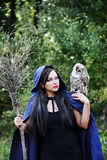 Witch with an owl talking Royalty Free Stock Images