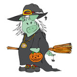 Witch Pig. Stock Photos
