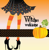 Witch with pumpkin. Witch background with pumpkin for greeting Halloween card Royalty Free Stock Photography