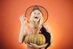 Witch with Pumpkin and black cat. Halloween party. Fashion Glamour Halloween art design. Halloween costume stock photo