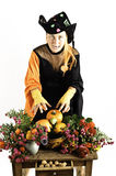 Witch and pumpkins and flowers Royalty Free Stock Photos