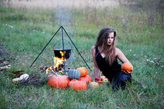 Witch with pumpkins in the meadow Stock Image