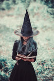 Witch reading a book Stock Images