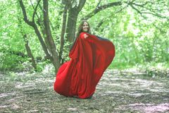 Witch in a red cloak among the. Forest halloween. escape attractive girl halloween magic and magic. girl in red gothic royalty free stock image