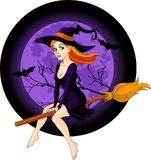 Witch riding a broom royalty free illustration