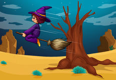 A witch riding a broom Stock Photo
