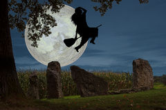 Witch's flight Royalty Free Stock Image