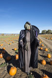 Witch Scarecrow Stock Photo