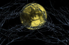 Witch shadow over moon at halloween Stock Photography