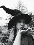Witch with spider Royalty Free Stock Image