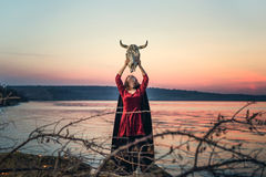 Witch on a swamp Royalty Free Stock Images