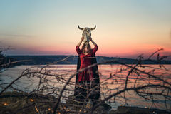 Witch on a swamp Stock Photos