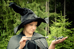 Witch with wand Stock Photography
