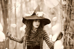 Witch in wood Royalty Free Stock Photography
